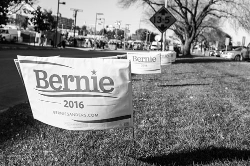 Bernie Yard Signs