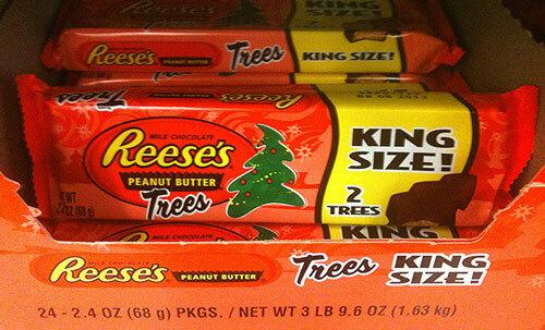 0214_trees